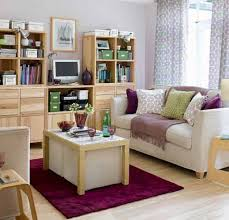Lovely Storage Small Living Rooms Amazing Toy Storage Ideas Living ...