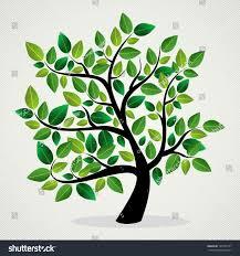 Tree Design Green Leaf Eco Friendly Tree Design Stock Vector Royalty Free