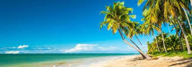 Resultado de imagem para praia do rn com dessalinizador