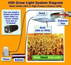 17 best ideas about high pressure sodium lights hps this hid grow light system diagram explains all the components you need for a metal halide hps