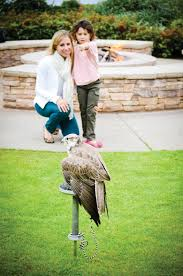 of the most unusual hotel jobs you ll encounter unusual hotel jobs falconer at montage laguna beach