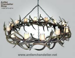 chandeliersreal antler chandelier elk mule deer round australia