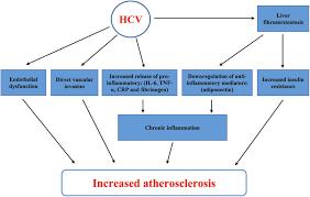 Flowchart Abbreviations Ami Acute Myocardial Infarction