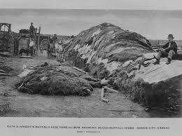 rath wright s buffalo hide yard in 1878