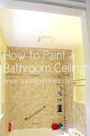 Type of paint for bathrooms What Type What Kind Of Paint To Use On Bathroom Ceiling Discover Here How To Paint Bathroom Nameahulu Decor What Kind Of Paint To Use On Bathroom Ceiling Discover Here How To