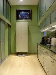 ... Astounding Home Interior Design In Best Mudrooms Decorating Ideas :  Attractive Green Wooden Wall Mounted Cabinet ...