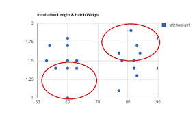 Crested Gecko Incubation Length And Hatch Weight