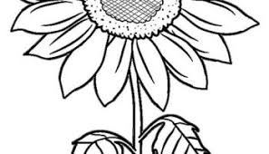 Sunflower pictures celebrate the end of summer, strong and tall, perfect for early fall decorations. Hanukkah Coloring Pages Ideas Whitesbelfast