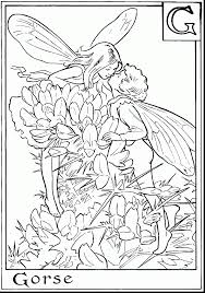 Small Picture unbelievable adult fairy coloring pages with printable coloring