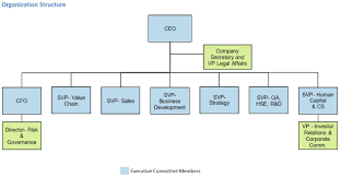 Corporate Management Structure Chart Agthia Investors Corporate Governance Group Governance
