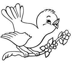 Small Picture Spring coloring pages bird on branch ColoringStar