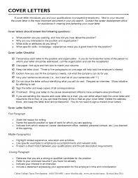 Career Advisor Resumeles Financial Planner For Summary Of
