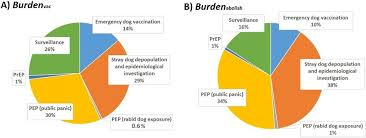 Pie Charts Comparing The Components Of The Economic Burden
