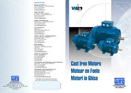 asynchronous motor 1 12 pages