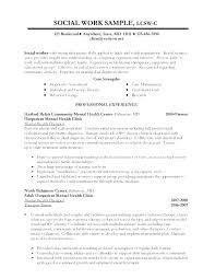 Volunteer Work On Resume Magnificent Resume Examples For Volunteer Work Resume Examples For Volunteer