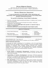 Examples Of Successful Resumes Strong Resume Examples Fresh Successful Resumes First Resume Sample 31