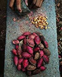 Pin by Rosanna Forbes on home   Indian food photography, Indian ...
