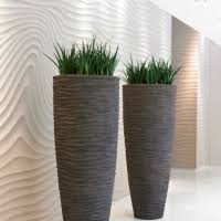 modern office plants. From Modern And Minimalist To Bold Exotic, There Will Always Be Plants That Can Complement Enhance Your Corporate Image. Office