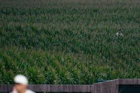 The chicago white sox defeated the new york yankees, 9 to 8, late thursday at an iowa cornfield that was transformed into a field of. T6m2rdpfv2keum