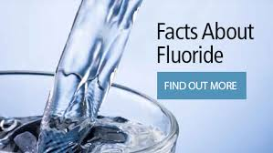 berkey water filter fluoride. Berkey Water Filter Systems Are So Advanced That They Classified As A Purifier. The Is Nothing Like Standard Filters. Fluoride 2