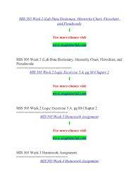 Hierarchy Chart Pseudocode Mis 505 Massive Success Snaptutorial Com