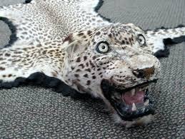 leopard skin rug image 4 leopard skin rug full head mount faux animal skin rugs grey