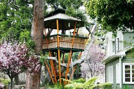 how to build a treehouse. Image Of: How-to-build-a-treehouse-designs How To Build A Treehouse