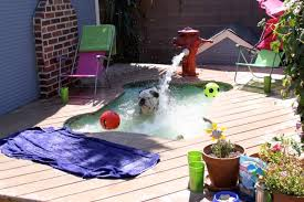 Cool Pool Ideas build a diy dog pool to keep your pup cool healthy paws 2740 by guidejewelry.us