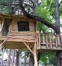 kids tree houses with slides. Or How About A Rock Climbing Wall, Ziplines, And Slide? Lets Get Together Design The Perfect Plans For Beautiful Backyard Treehouse! Kids Tree Houses With Slides