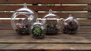 set of hanging glass globe plant terrariums orbs air with hanging glass orbs