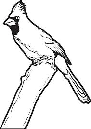 Small Picture Free Printable Cardinal Coloring Page for Kids