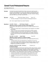 Example Resume Format For Professional Resume Job Resume Format