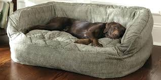 sofa bed for dogs remarkable exterior ideas for large dog sofa bed leather sofa bed for sofa bed for dogs