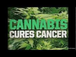 hemp oil healing cancer