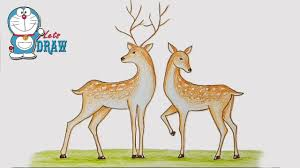 How To Draw Two Deer Step By Step