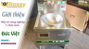 Giới thiệu bếp từ Đức Việt một chảo inox BTDV1CI1500 | Induction Cookers | Bếp  từ