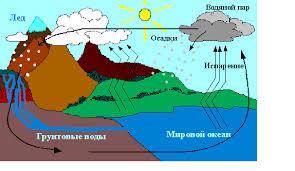 Круговорот воды в природе Реферат Круговорот воды в природе