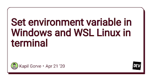 set environment variable in windows and