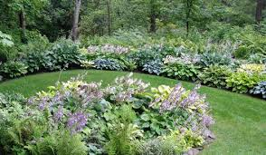 how to get creative with hostas