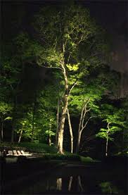 lighting pictures. best 25 landscape lighting ideas on pinterest design yard and outdoor garden pictures