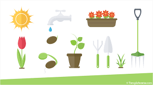 Spring Powerpoint Spring Icons For Powerpoint Templateswise Com
