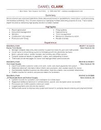 Summary For Resume Stunning Summary On Resume Mkma
