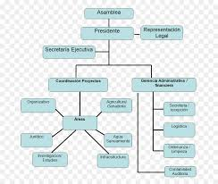 Organizational Chart For Non Profit Organization Organizational Chart Text