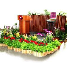 decorative plants for office. Plants Rental \u0026 Decoration In Singapore SGD380 And Above Decorative For Office