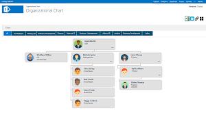 Organizational Chart Global Collab365 Directory Collab365