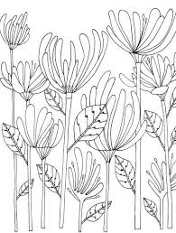 Fancy Botany Coloring Book Collection Coloring Pages Anime