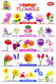 Flower Chart Krazy Flowers Chart Buy Charts Product On Alibaba Com