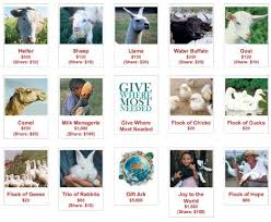 charity gifts heifer intl