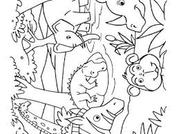 38 Water Animals Coloring Pages Water Animals Coloring Pages For