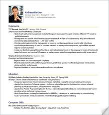 Job Resume Sample Stunning Sample Professional Resume Best Sample